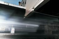 Tsukiji0_14